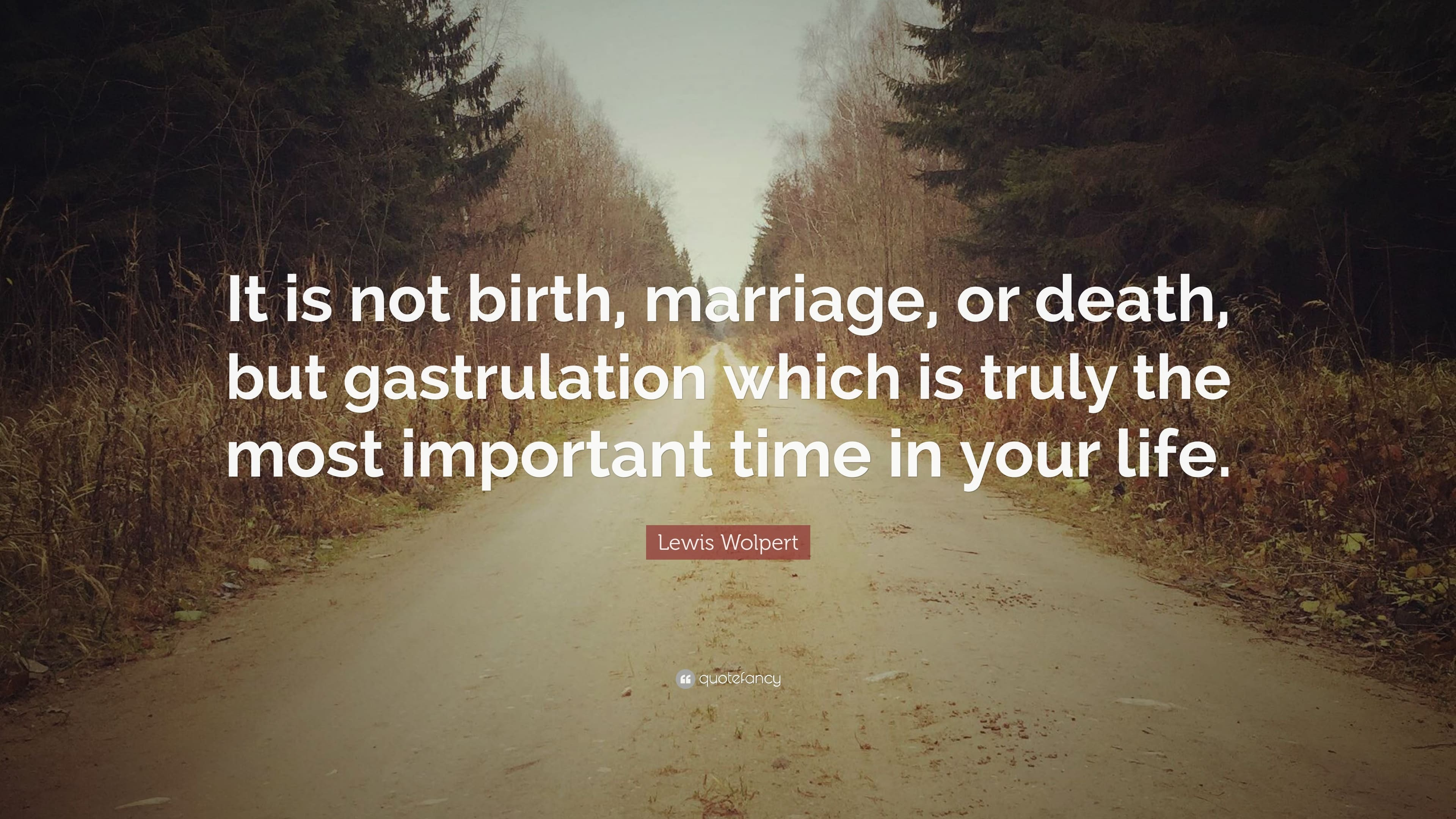 Best Reasons Why Marriage Is Important In Your Life