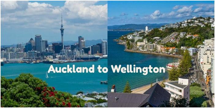 New Zealand Honeymoon Package