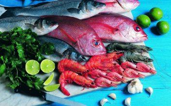 4 Refreshing Seafood Salads